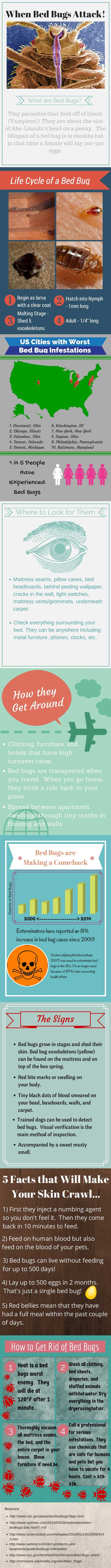 When Bed Bugs Attack! by PlatformBedsOnline.com