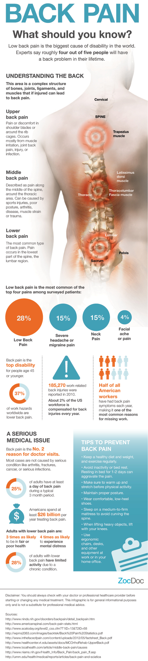 Back Pain: What You Should Know by ZocDoc