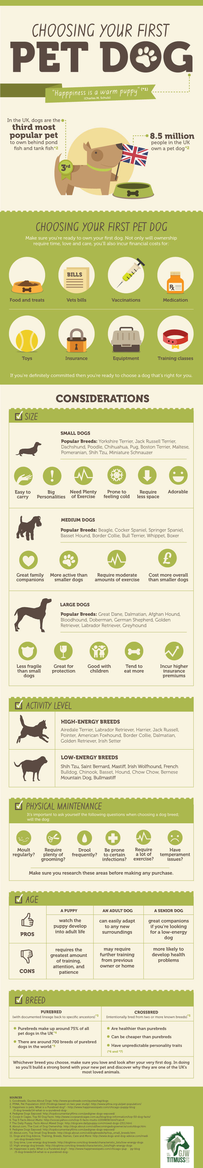 Choosing Your First Pet Dog by GJW Titmuss