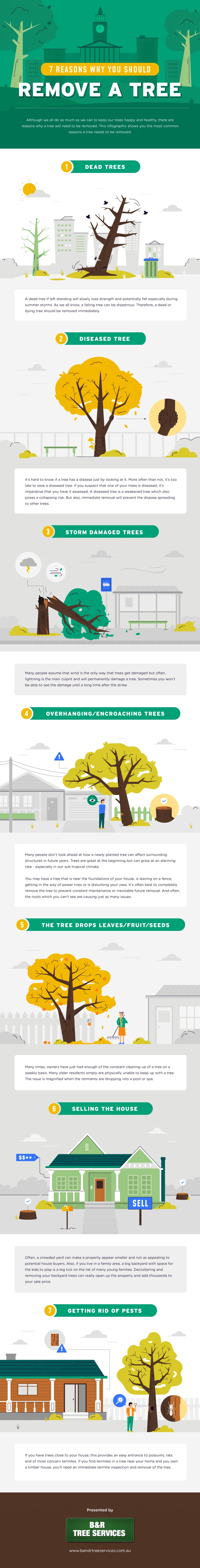 7 Reasons Why You Should Remove a Tree by B&R Tree Services