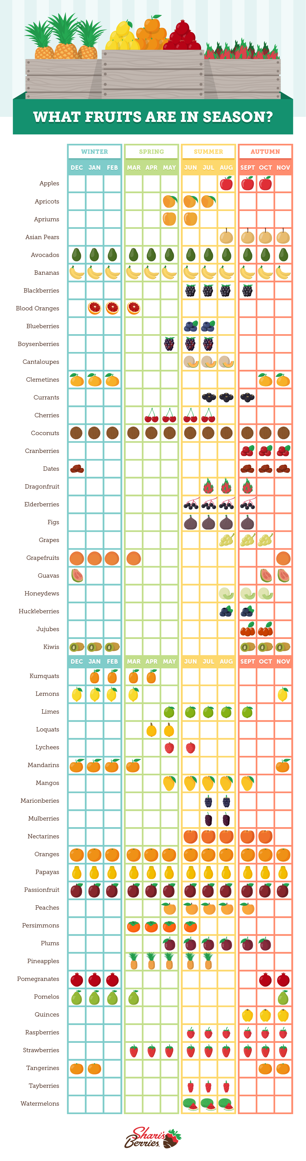 What Fruits Are In Season? by Shari's Berries